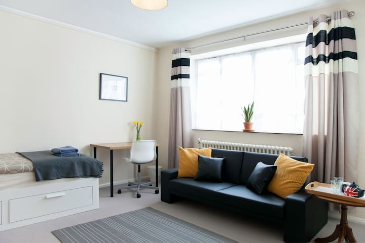 Large & Spacious room in the centre - London - Lägenhet
