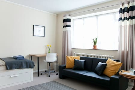 Large & Spacious room in the centre - London