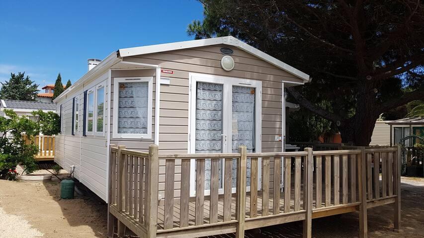 Mobil home 4/6 p canet en roussillon camping 4*