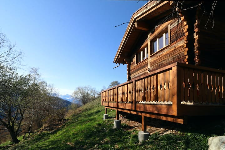 Comfortable chalet in the heart of nature