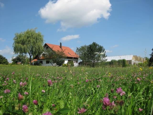 stadtnahe Einliegerwohnung im Grünen - Memmingen