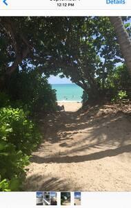 Cabin steps to the beach - Miami Beach