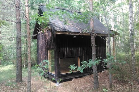 A cabin in the forest