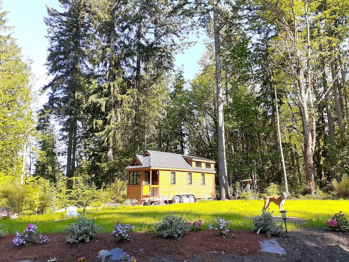 Tumbleweed Tiny House in the Woods