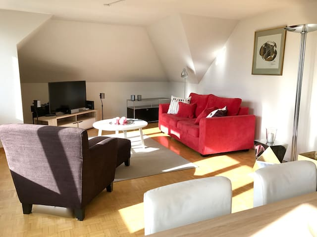 Bright City Centre Apartment with Roof Terrace - Zürich