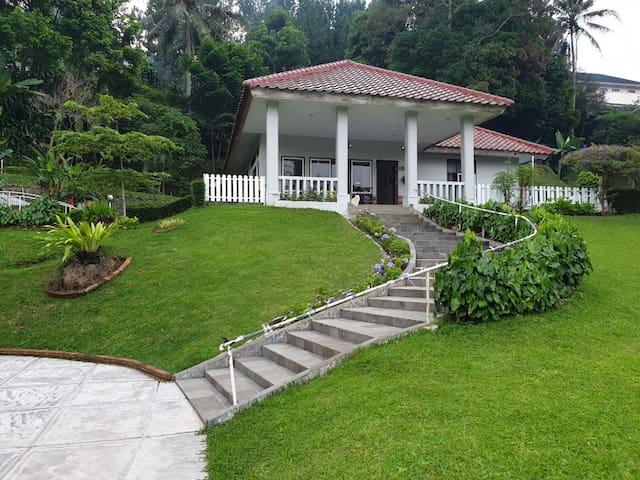 Villa E-House a perfect place to enjoy the nature