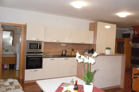 Javorovy apartment - Apartment Vlckova - Zlin