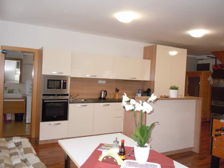 Javorovy apartment - Appartement Vlckova - Zlin