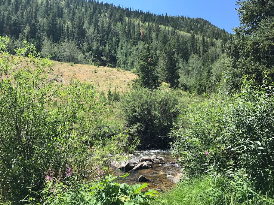 The rambling creek next to the cabin.