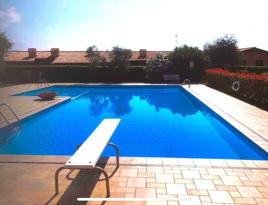 Swimming pool close view