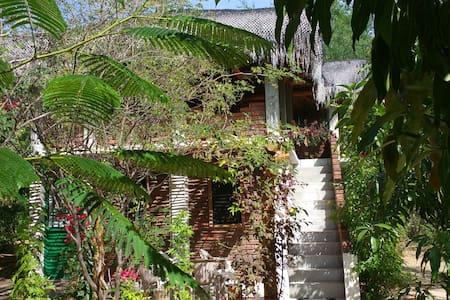 Palapa Covered Adobe Casita in Tropical Garden