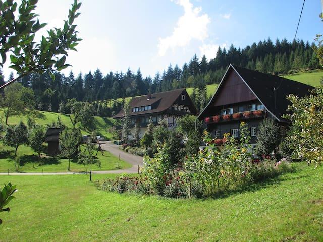 Bergbauernhof romantik, Kinderträume werden wahr - Oberkirch
