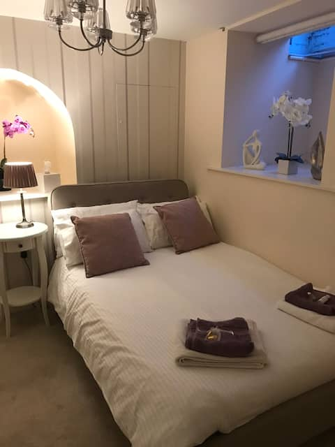 Private double room near Basingstoke town centre