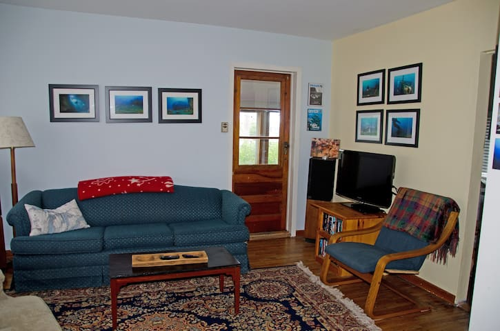 Our living room area with comfortable seating and pull -out couch.    Walls through-out the cottage are decorated with underwater photos taken by your host!