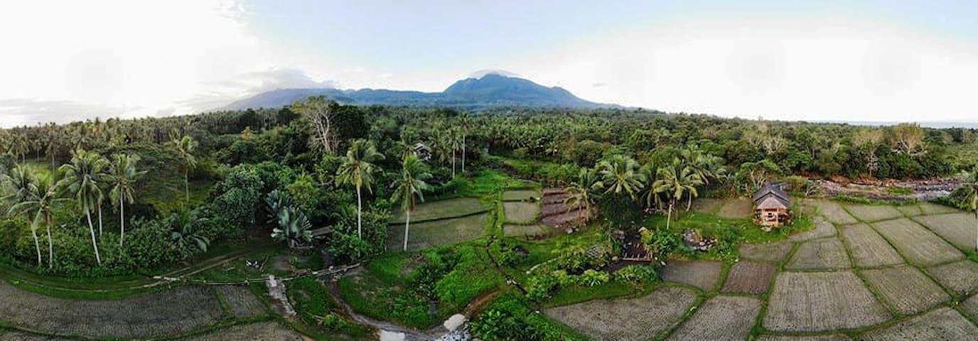 Living like in Bali