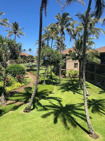 Remodeled condo with A/C  in Pono Kai Kapaa resort