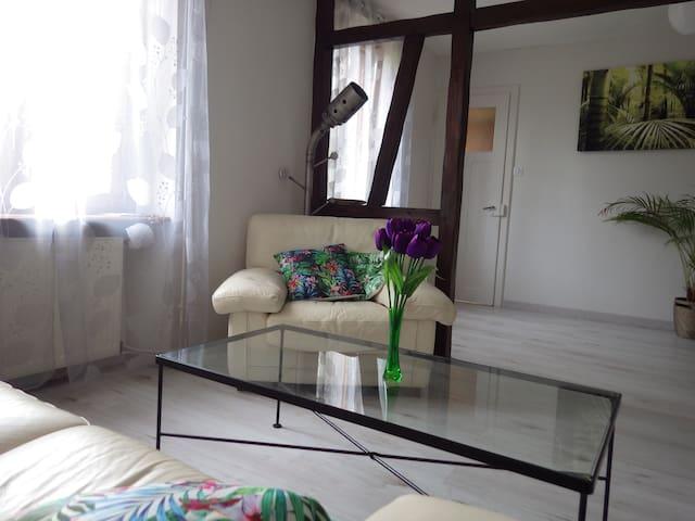 Joli appartement  entièrement rénové avec jardin