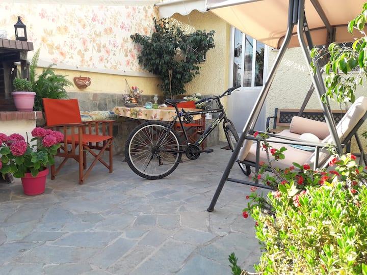 Sunny Home | Free NETFLIX