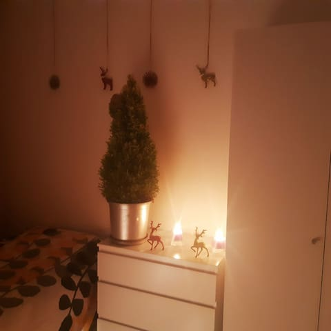 Sweet Christmas room in the central part of city