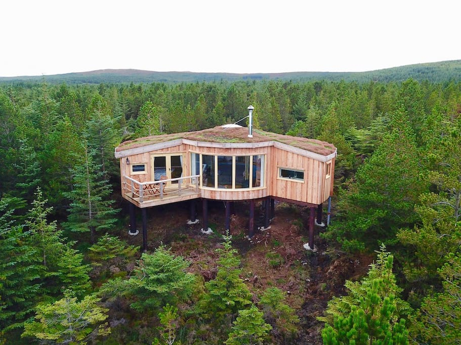 Secluded treehouse style cabin, nestled in the forest