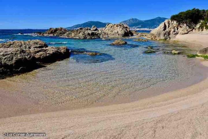 Joli Studio au cœur du maquis à 15 min des plages