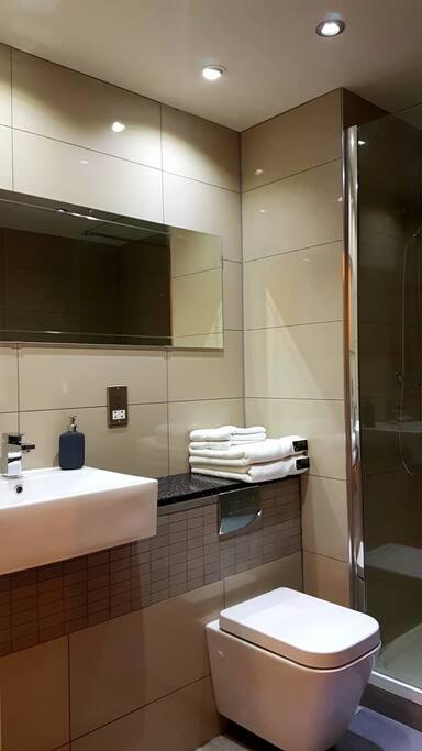 5 Star Modern Bathroom