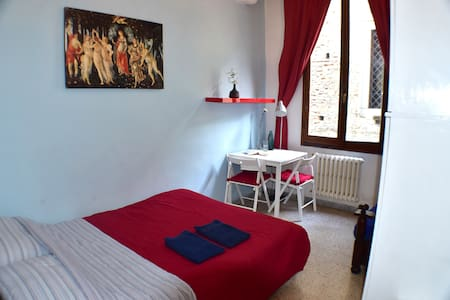 Nice room in the centre of Florence - Firenze - Apartment
