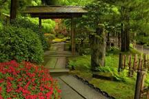 Portland's Japanese Gardens.