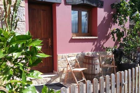 habitacion baño y tv en zona rural - cangas de onis  - House