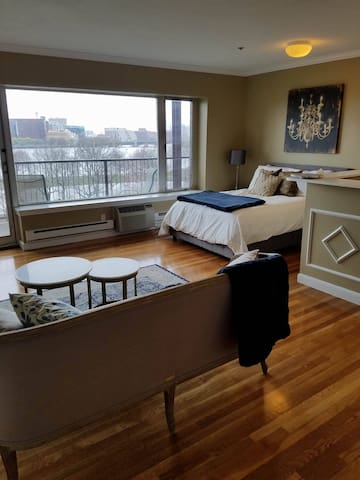 Newly Remodeled Studio in Back Bay - River View