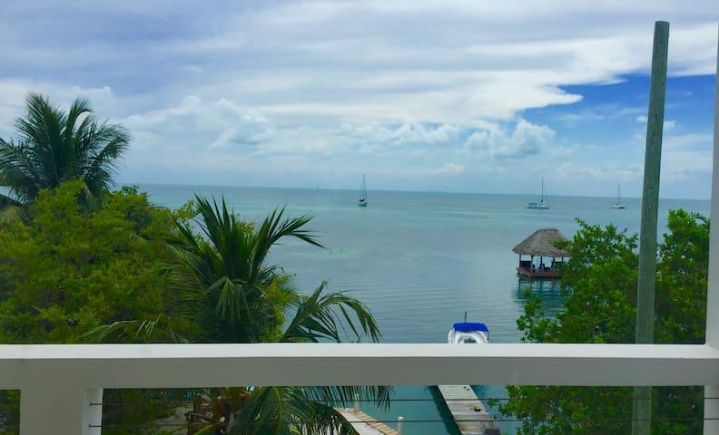 La Vida Perasoza Single Room - Belize City - Villa
