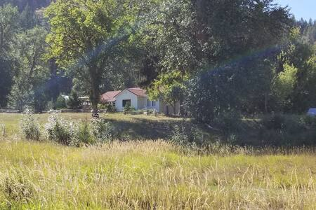 Vintage Farmhouse on 35 acre historic homestead