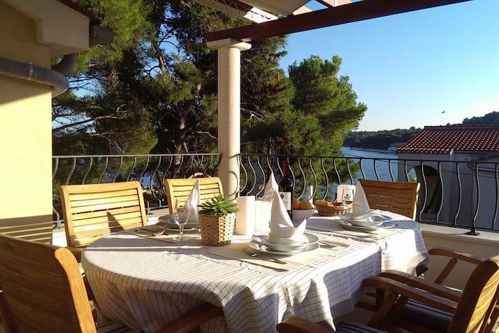Two bedroom apartment near beach Verunić, Dugi otok (A-8103-a)