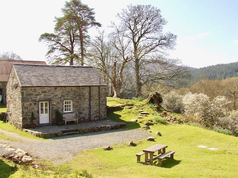 Historic farm cottage in Coed y Brenin Forest