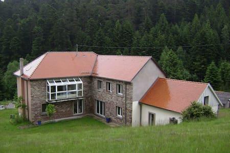 Hansel - Apartment
