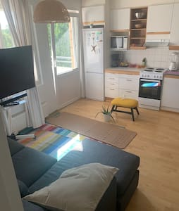 Bright apt centrally located w/ sauna & Netflix