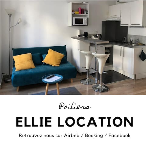 Cosy flat close to the city centre of Poitiers