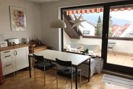 schöne, helle, möblierte Wohnung in Miltenberg - Miltenberg - Wohnung