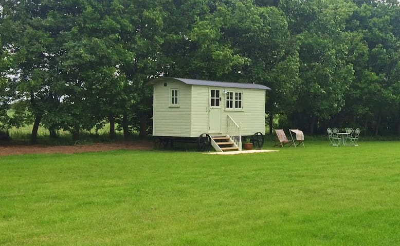 The Ginger Cow Shepherd Hut - East Riding of Yorkshire