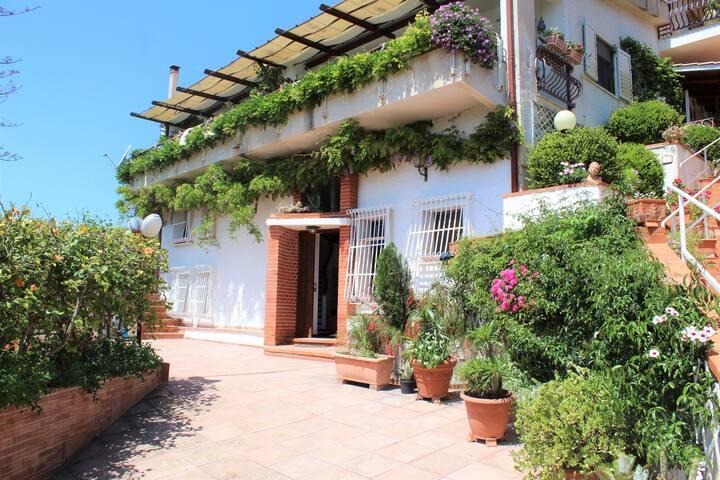 Villa 4 Palme