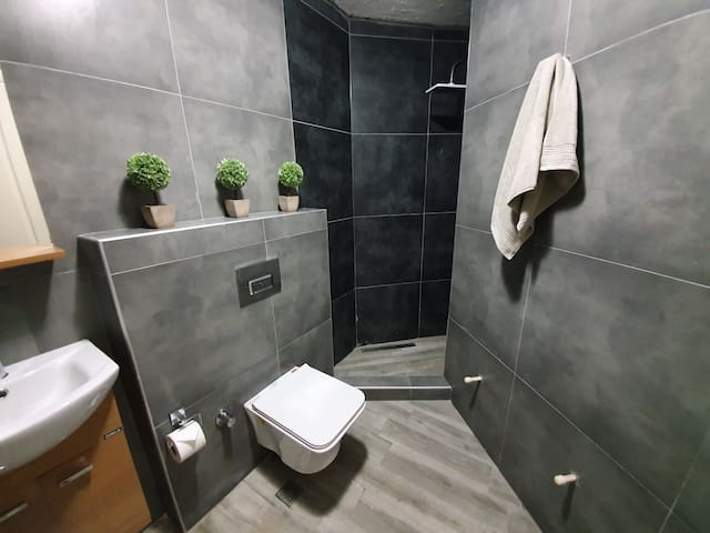The new basement bathroom with shower
