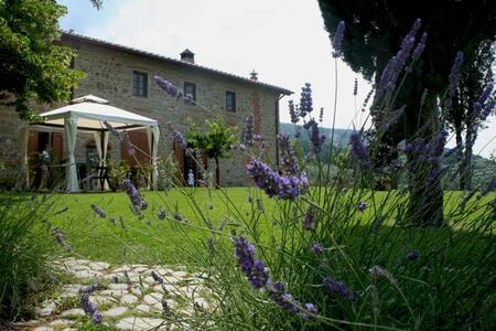 PAPAVERO: cozy apartment in stone farmhouse - Reggello - Wohnung
