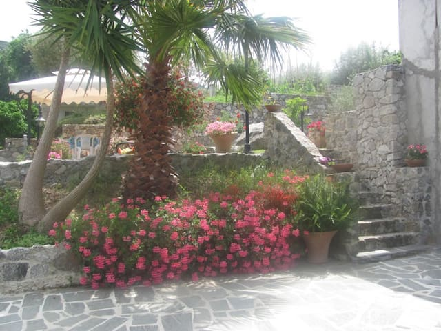 Holidays in Tropea - Tropea