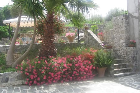 Holidays in Tropea - Tropea - B&B