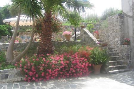Vacanze a Tropea - Tropea - Bed & Breakfast