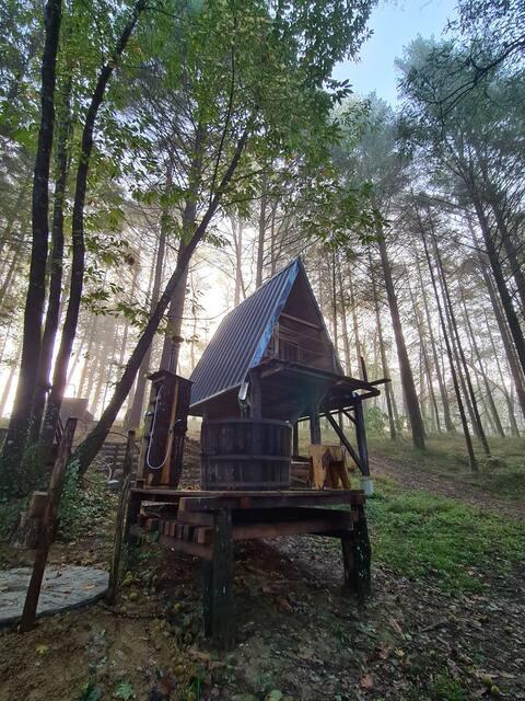 Cabaña forestal en Salies de Bearn