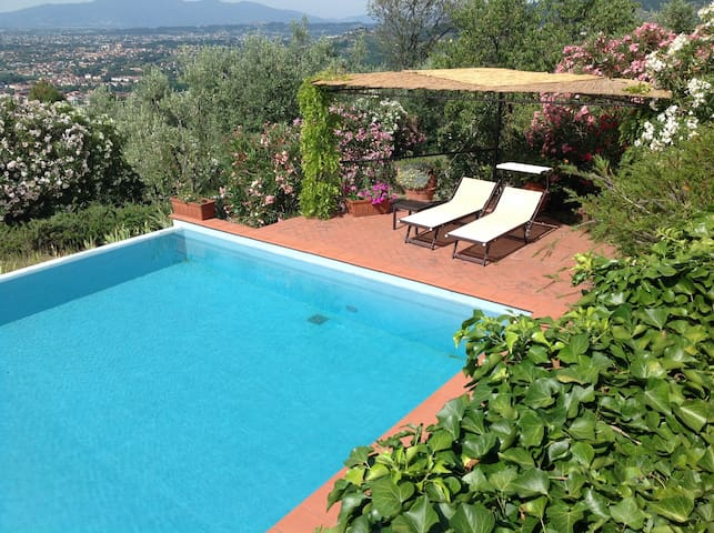 Tra gli ulivi Tuscany Nest. - Montecatini Terme - บ้าน