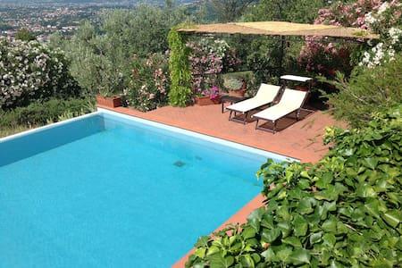 Tra gli ulivi Tuscany Nest. - Montecatini Terme - Haus