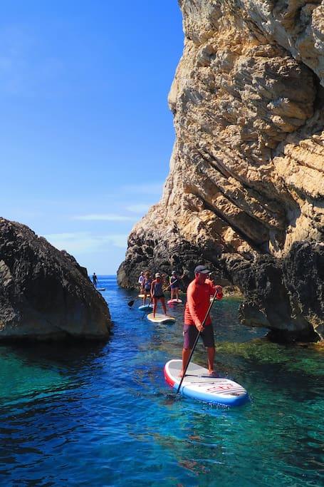 Paddle board safari & hiking combo