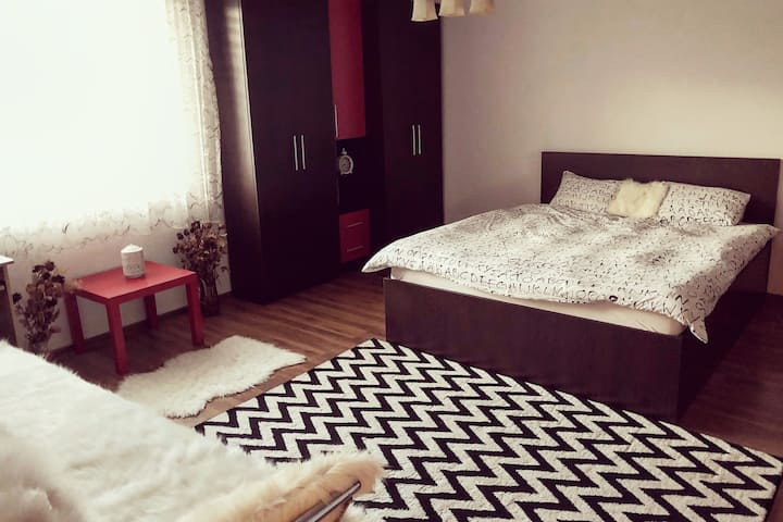 Cozy and quiet apartment in Bucovina